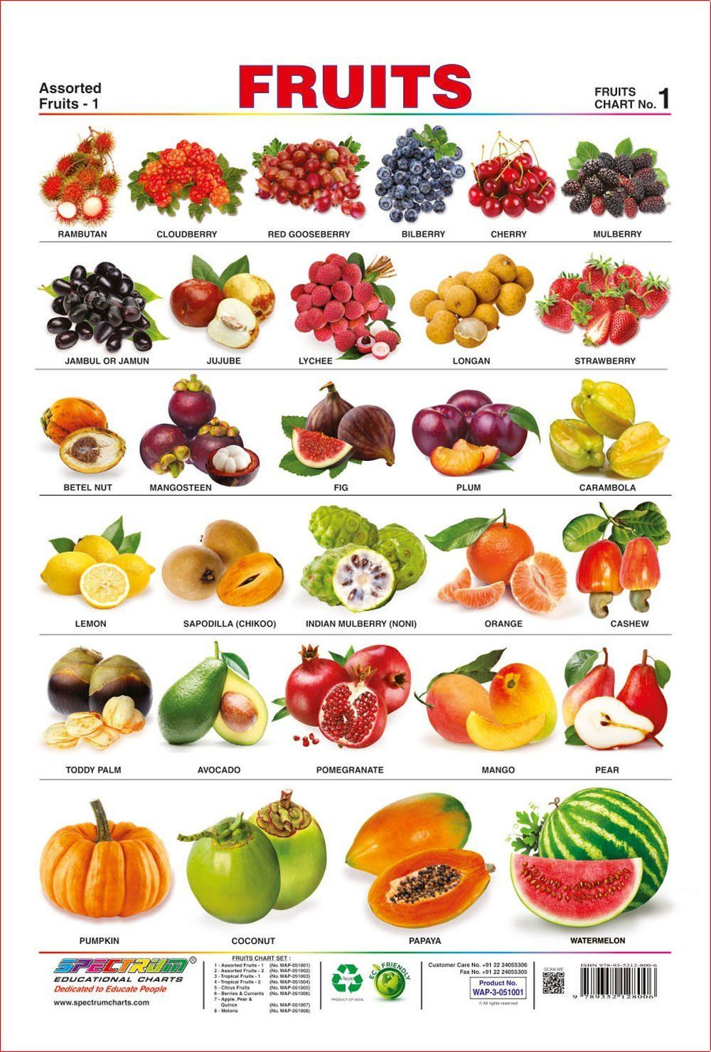 Amazon Com Spectrum Pre School Kids Learning Laminated Educational Fruits Name Wall Chart Office Products English Food Vegetable Chart Vegetables