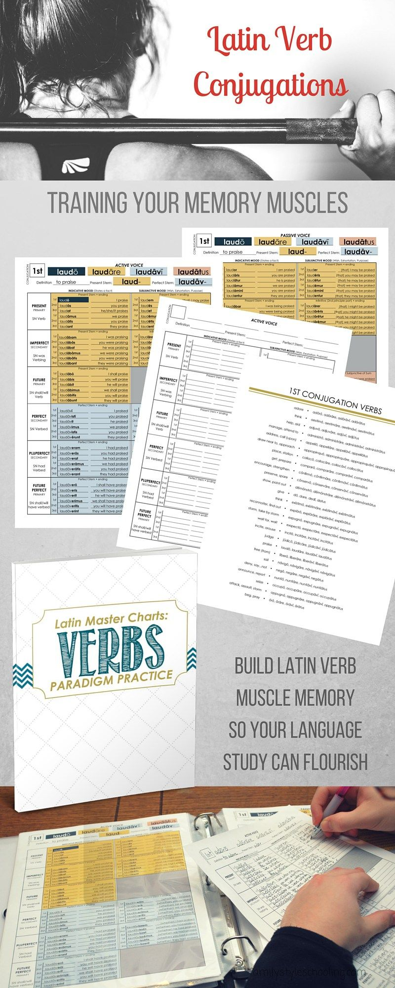 Latin Verb Conjugation Muscle Memory Conditioning Family Style Schooling Latin Language Learning Teaching Latin How To Memorize Things [ 2000 x 800 Pixel ]