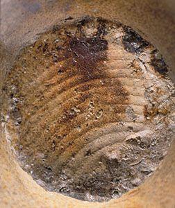"Title:  Bellarmine jug Date:  ca. 1672 Place:  Chelsea (London, England) ? Format:  Dark buff stoneware / salt glaze / H.: 8 7/8"" (22.5 cm); Diam. (body): 5 1/4"" (13.3 cm) Description:  Image Description: Detail: bottom"