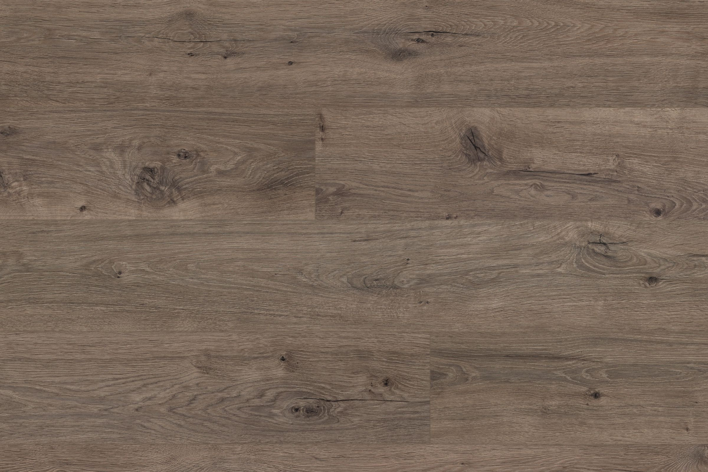 Awesome Harmonics Silverleaf Oak Laminate Flooring Reviews