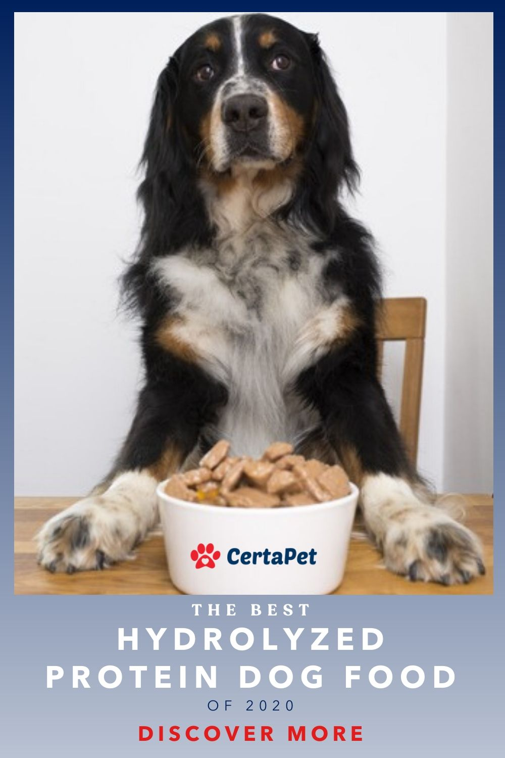 Christmas + Presents + Dogs + Cats + Pets + 2020 The Best Hydrolyzed Protein Dog Food of 2020 | CertaPet in 2020