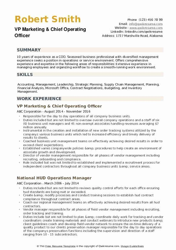 chief marketing officer resume inspirational chief