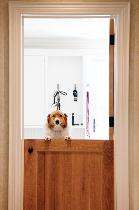 Dutch Door For Dog Room Vistamont Addition Pinterest Dutch