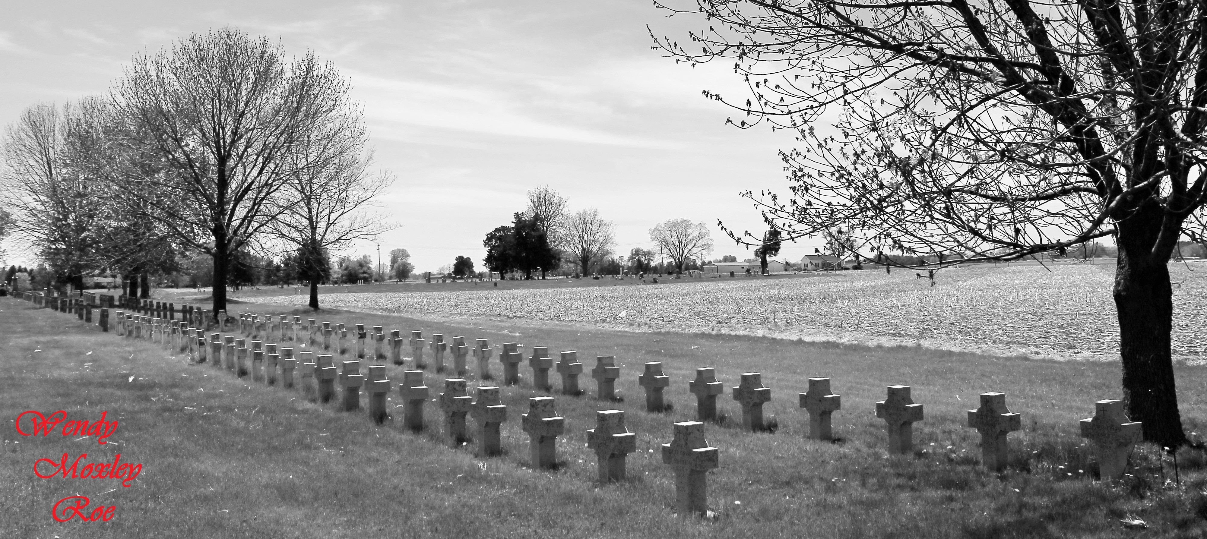 Saints Peter and Paul Cemetery Nauvoo, IL Tombstone