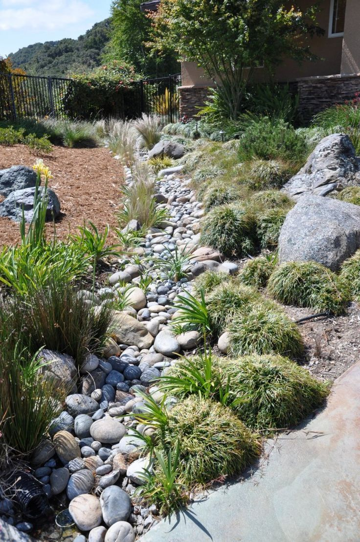 Dry Creek Bed Landscaping Designs Grasses In Dry Creek 400 x 300