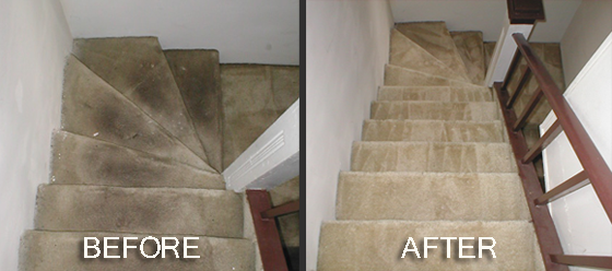 Before And After House Cleaning Pictures Carpet Cleaning