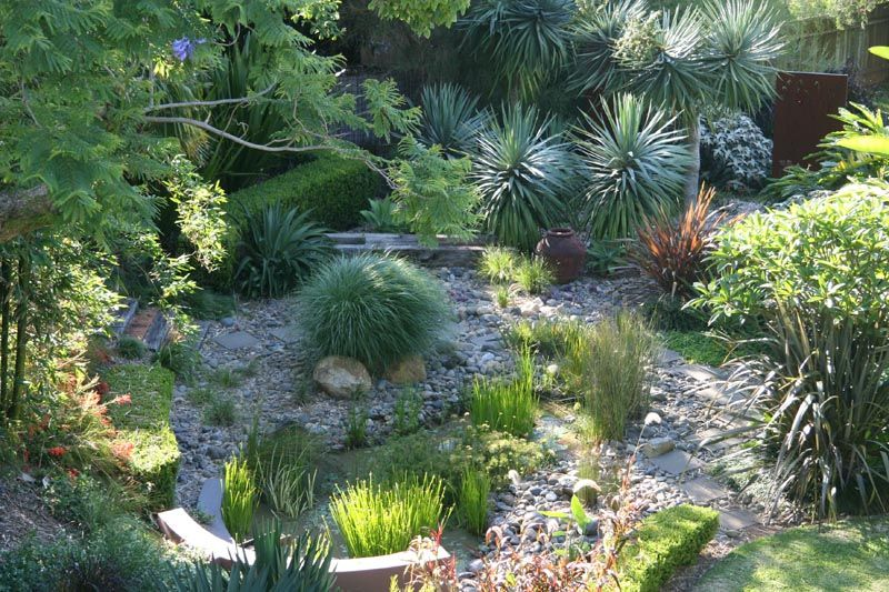 Nevell Garden Coffs Harbour Garden Expressions Landscape Design For Residential Commercial And Pools C Australian Garden Landscape Design Garden Design