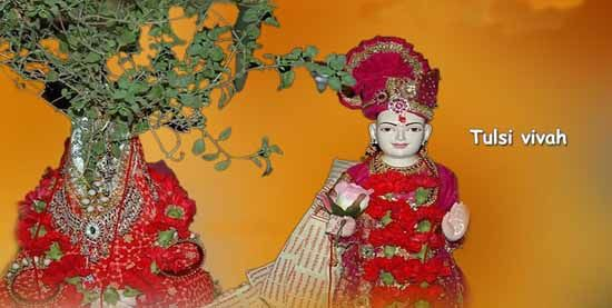 Tulsi Vivah for Early Marriage | Tulsi Vivah Dates | Vedic