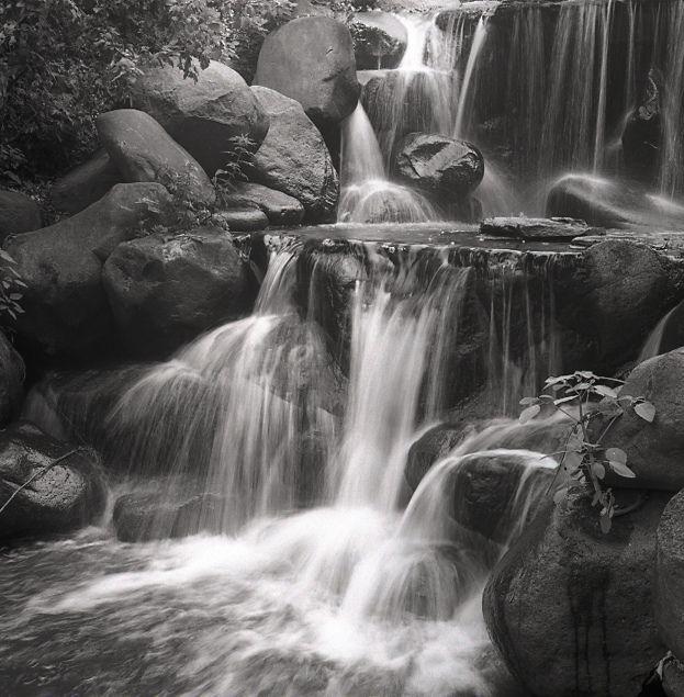 Dan Cordle Photography
