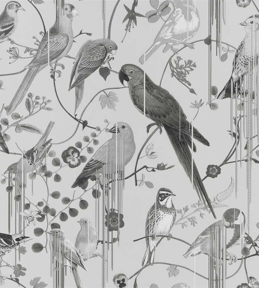 Birds Sinfonia Wallpaper by Christian Lacroix 2020 새