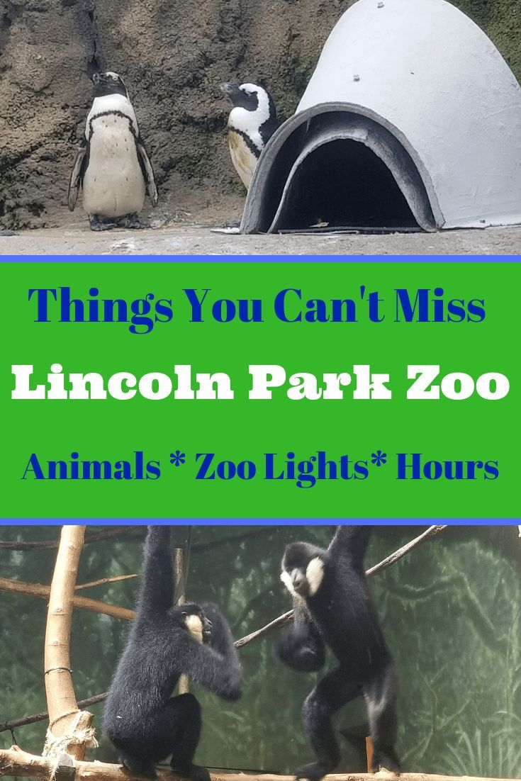 Lincoln park zoo chicago parking hours map zoo lights