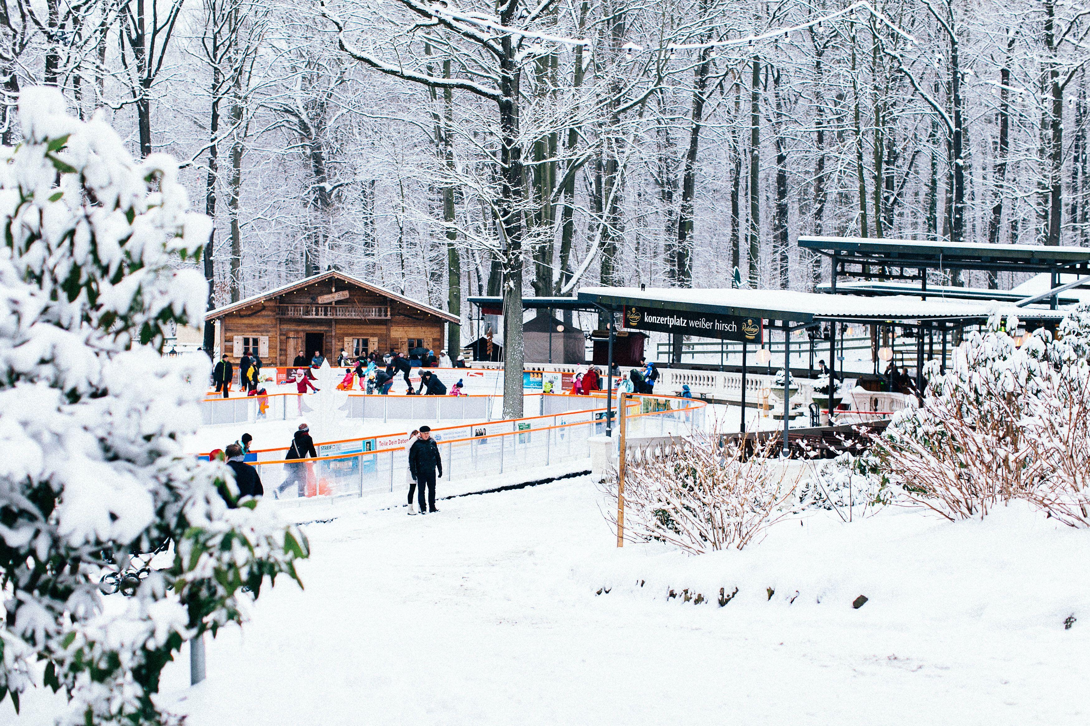 Uberlegen DRESDNER WINTER   Dresdens Romantischste Eisbahn Auf Dem Konzertplatz  Weißer Hirsch Bild: © Anke Wolten