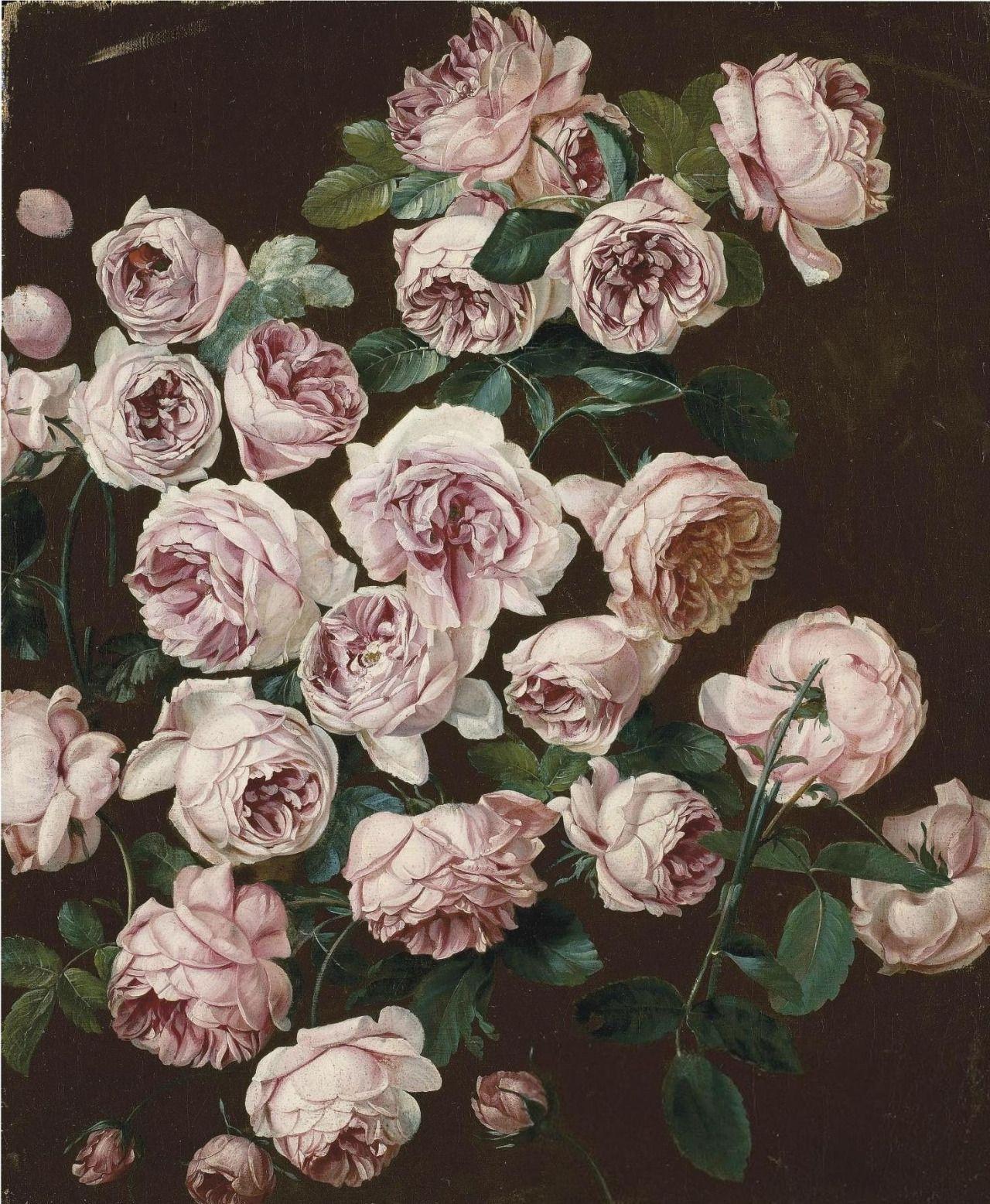 Black floral print wallpaper dark floral wallpaper by ellie cashman - Pancrace Bessa Paris 1772 1835 Ecouen A Rosebush Oil On Canvas Illustration Flowerrose