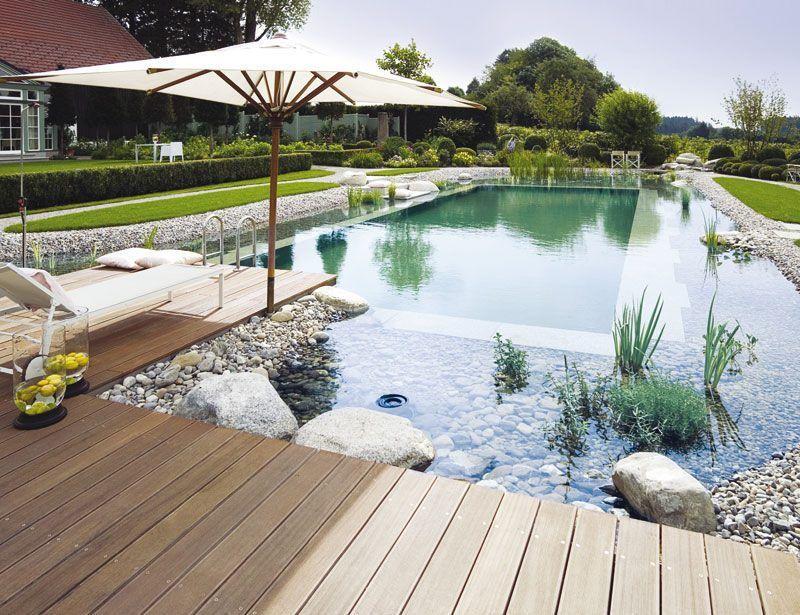 Wie viel darf ein Schwimmteich kosten? Gardens