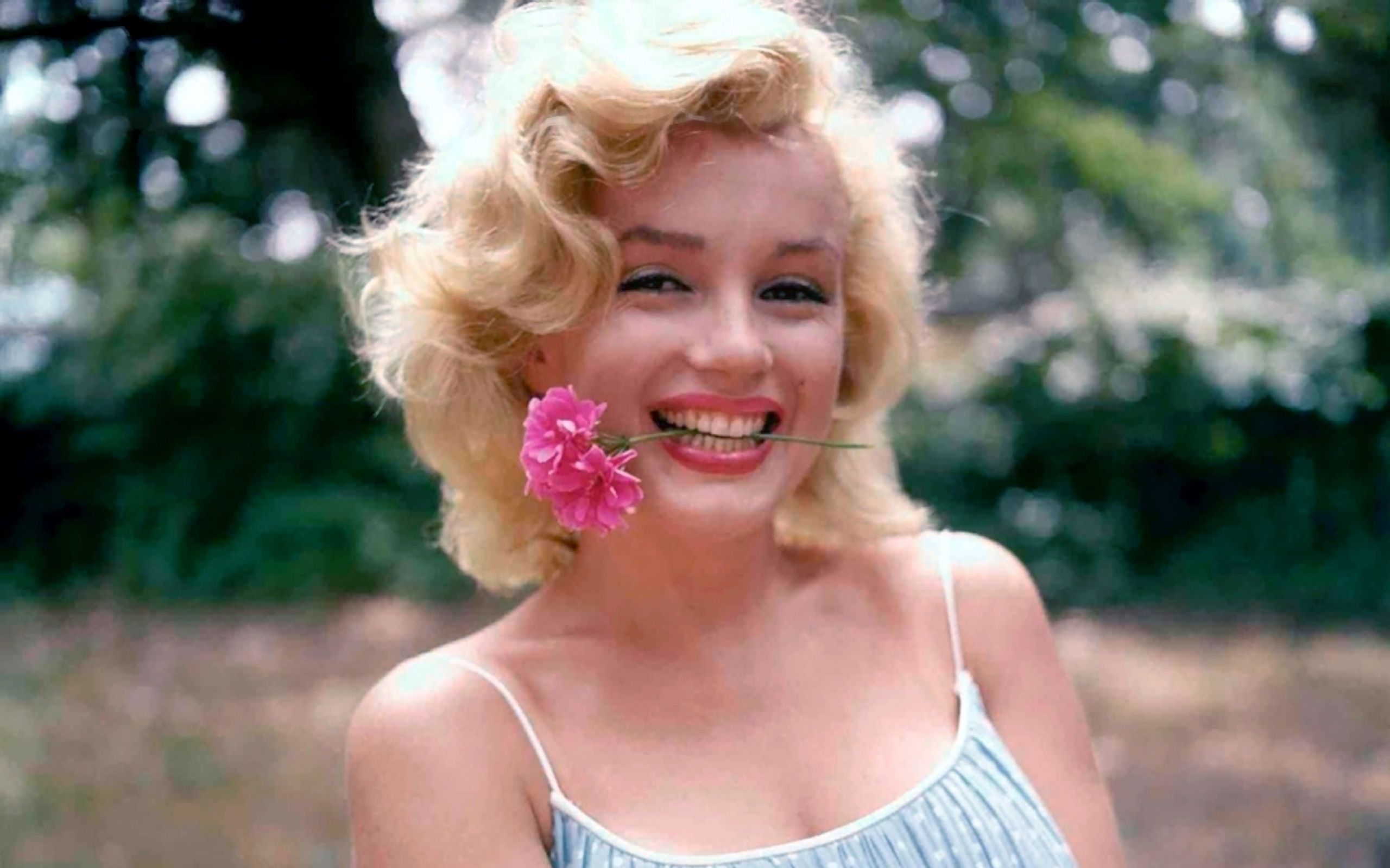Marilyn monroe hd wallpapers get the newest collection of marilyn marilyn monroe hd wallpapers get the newest collection of marilyn monroe hd wallpapers for your desktop pcs cell phones and tablets only at voltagebd Choice Image