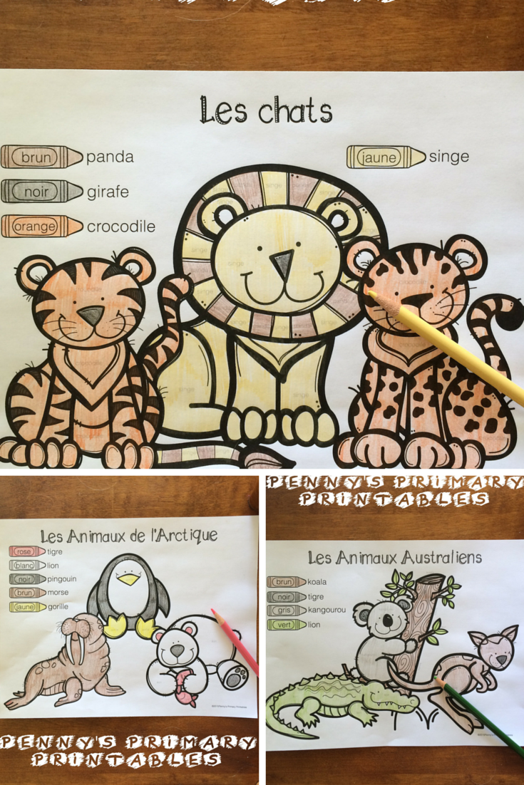 French Zoo Write the Room Vocabulary activities