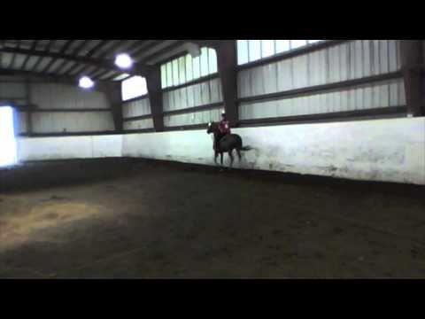 Saddlebred Saddle Seat Equitation Pattern Saddle Seat