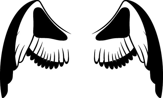 kostenloses bild auf pixabay  flügel engel weiß