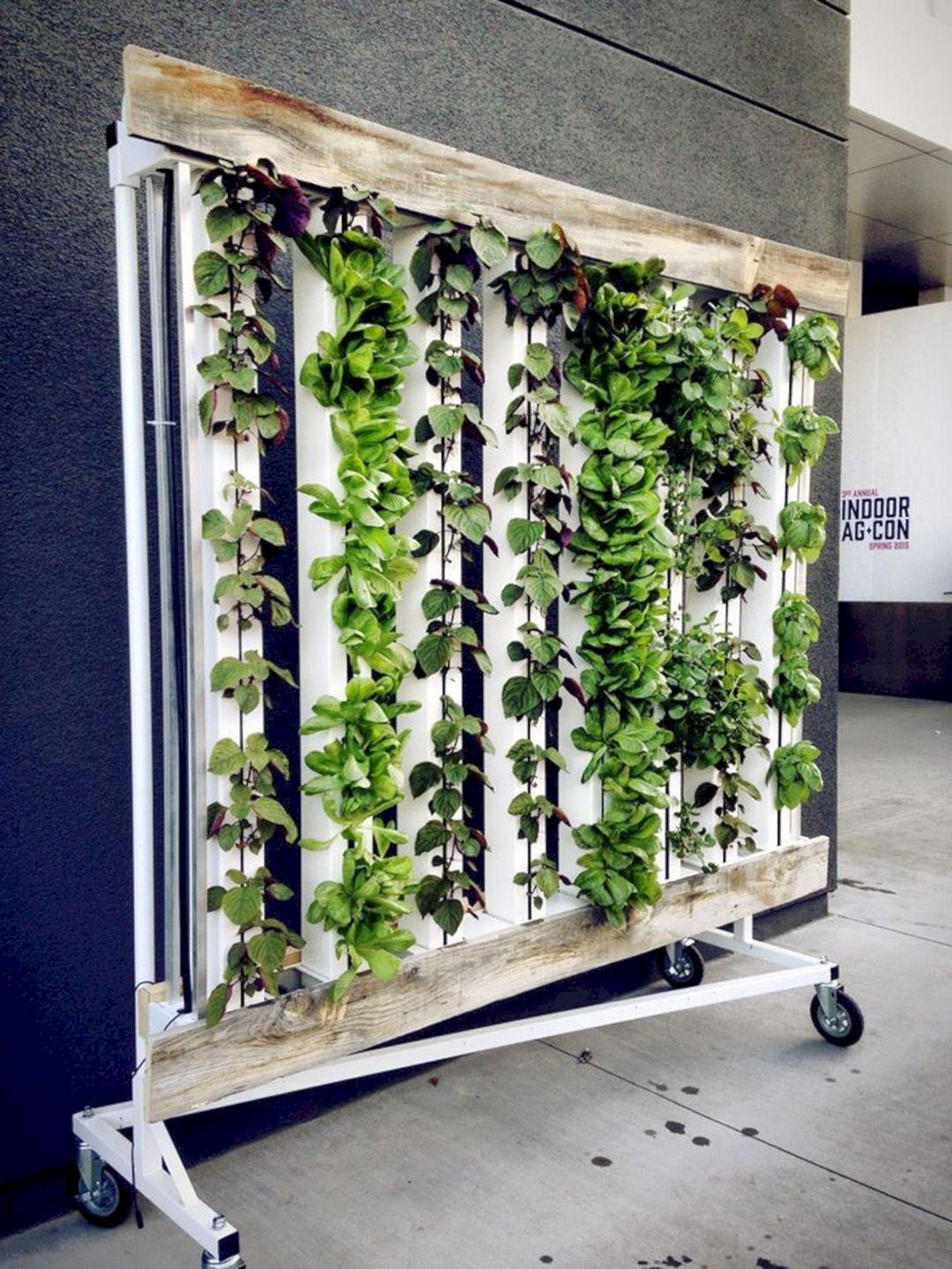 Indoor Hydroponic Wall Garden 11 (mit Bildern