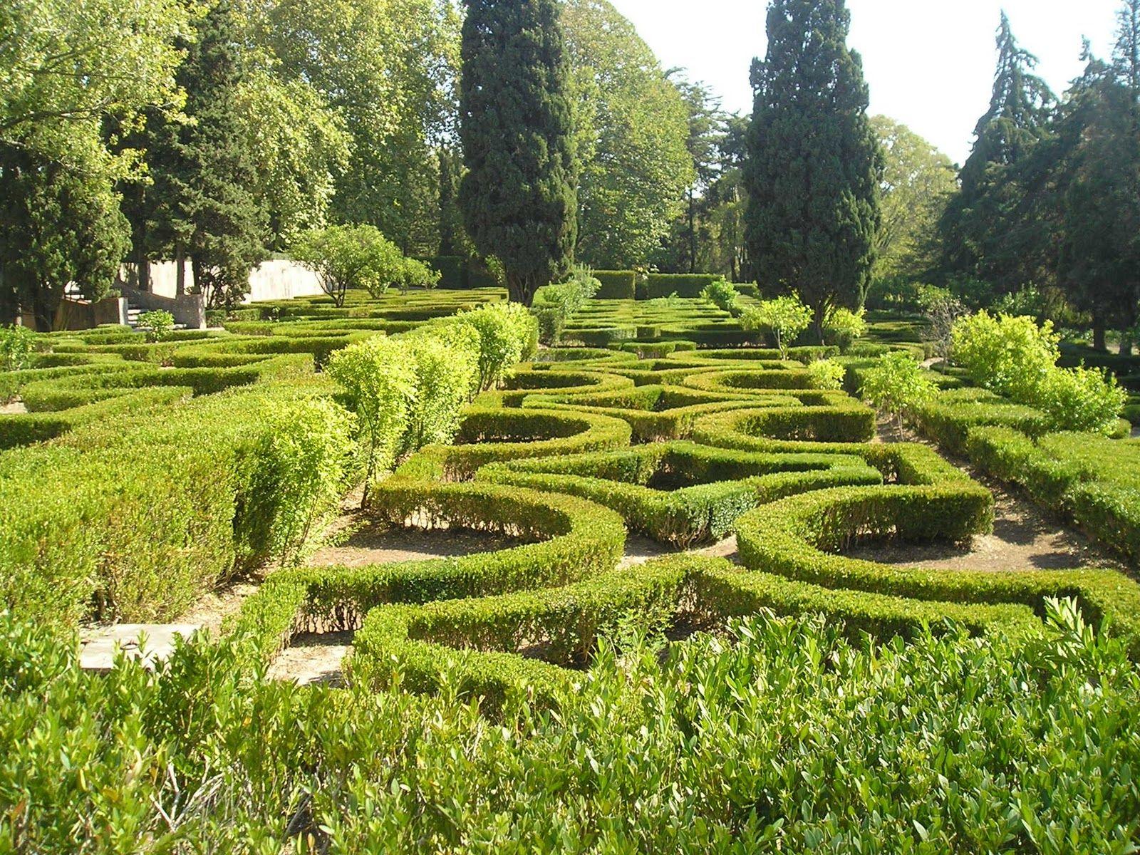 Jardin du palais royal   Garden design, Outdoor, Paris
