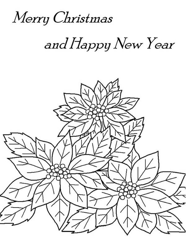 Poinsettia Flower, : Christmas and New Years Eve Decor with ...