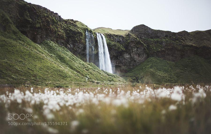 Popular on 500px : Iceland impression by Florian-Wenzel