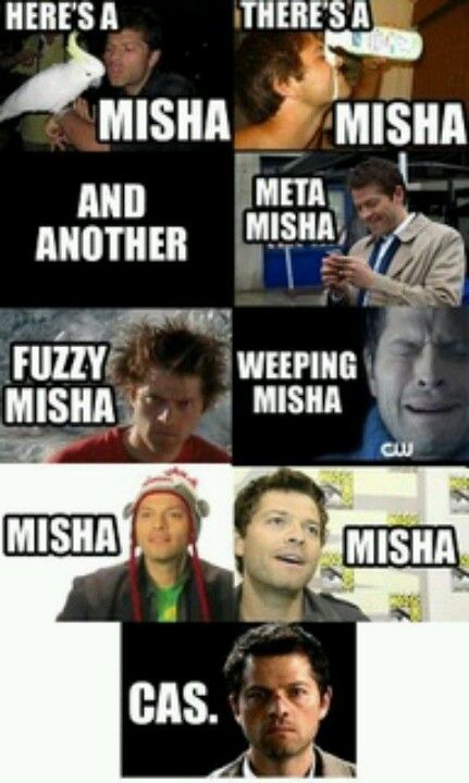 Misha/Cas