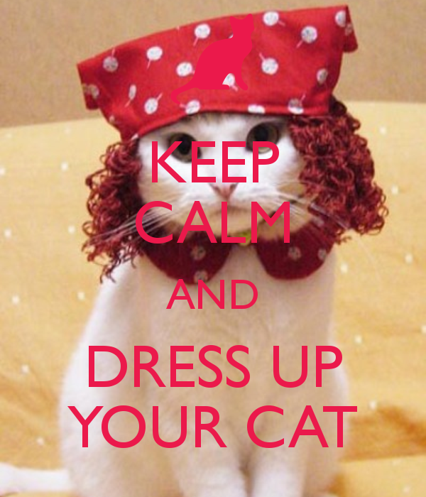 KEEP CALM AND DRESS UP YOUR CAT keep calm and