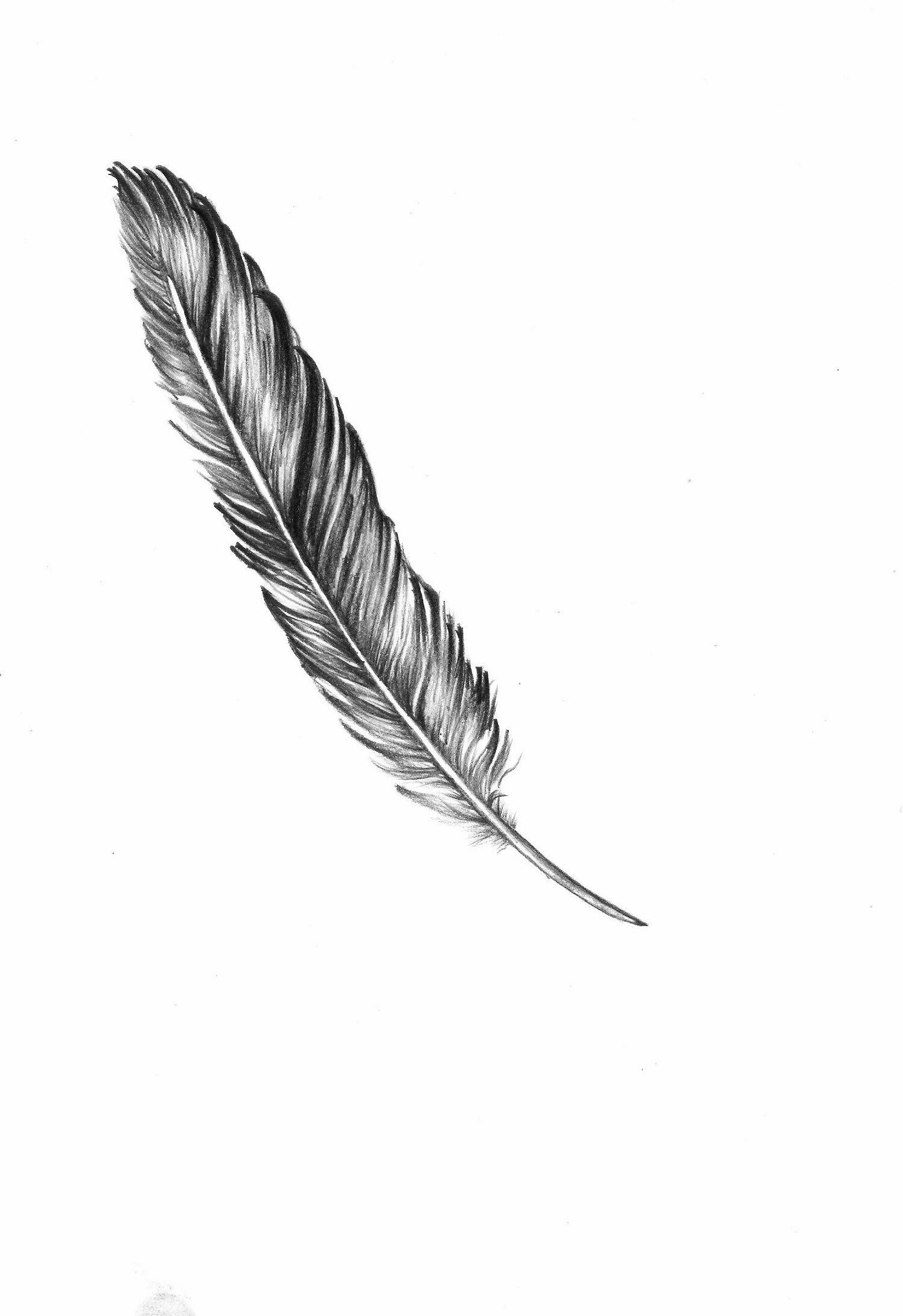 feather tattoo #feather #tattoo | Quill tattoo, Feather ...