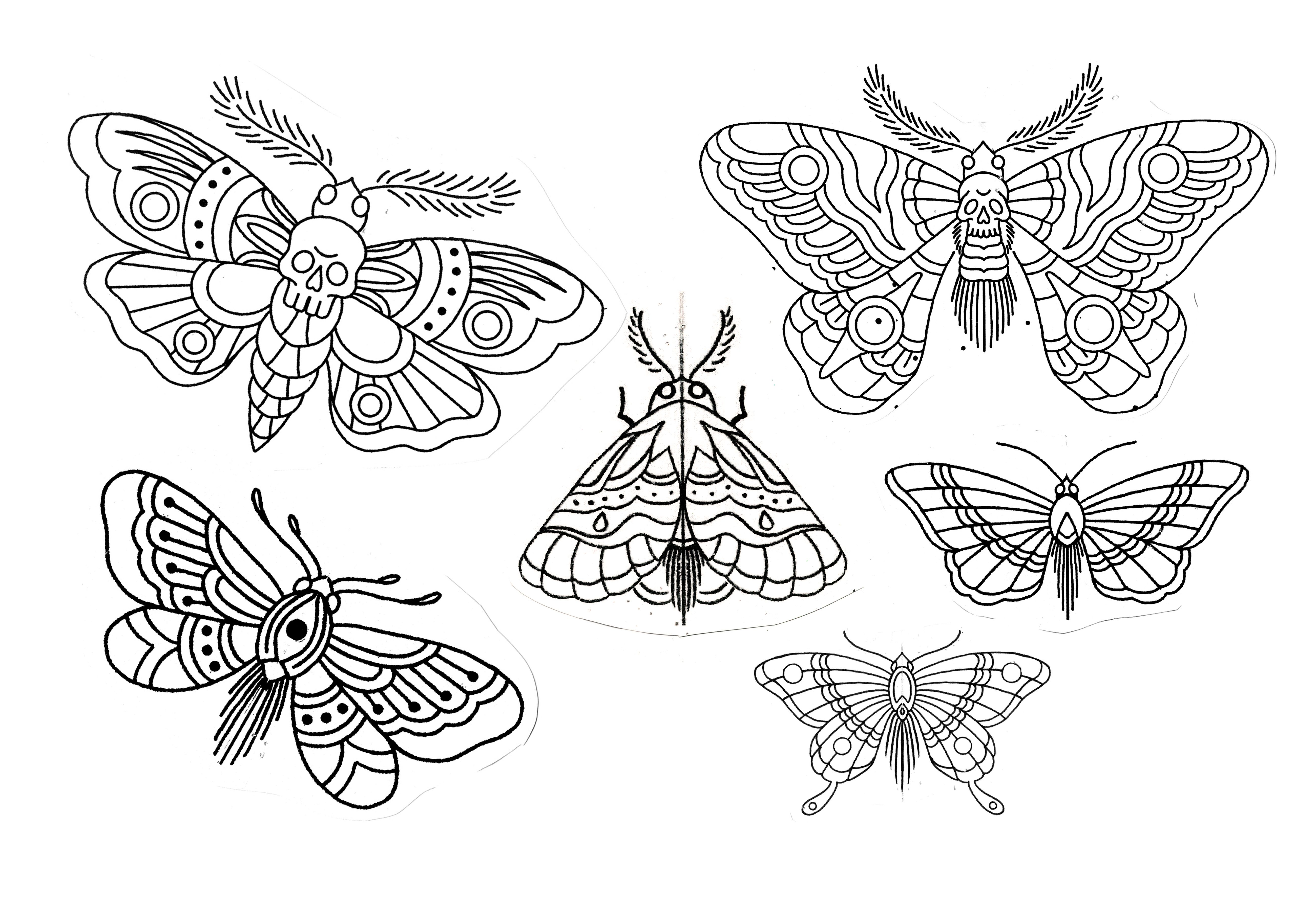 Traditional Moth And Butterfly Tattoo Flash Sketch Design Unique Butterfly Tattoos Moth Tattoo Design Black Butterfly Tattoo