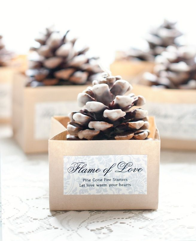 Pinecone Fire Starter Favors from My Own Ideas blog #diy #craft #pinecone #winter #wedding #favor #Christmas #thanksgiving #Holiday #quote