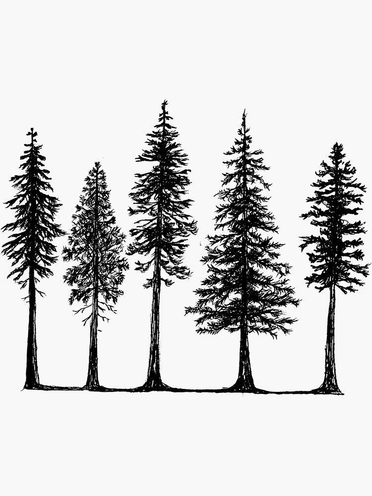 Pine Tree Line Art Logo Minimalist Graphic by lawoel