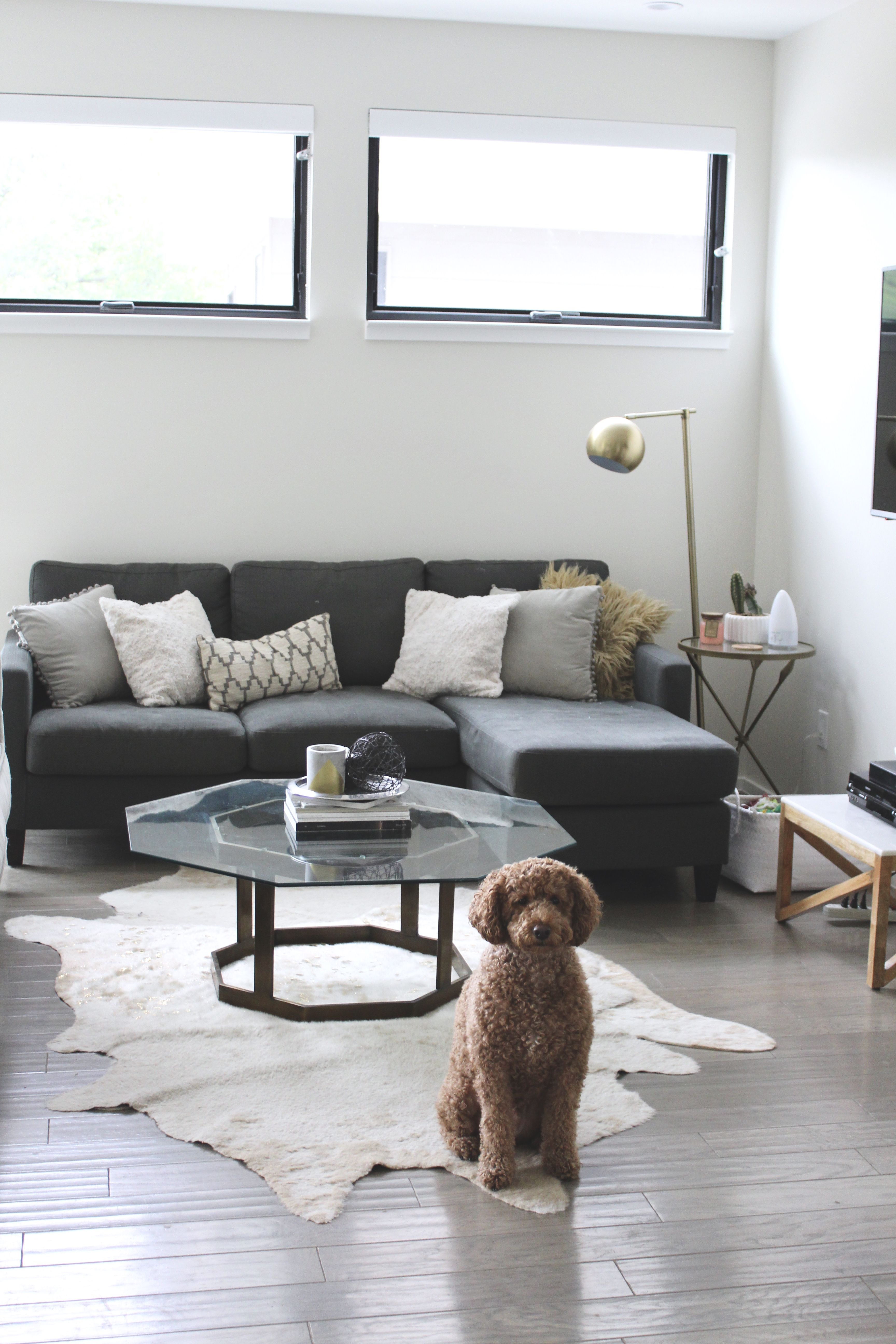 creating a chic + functional dog friendly living room | pet