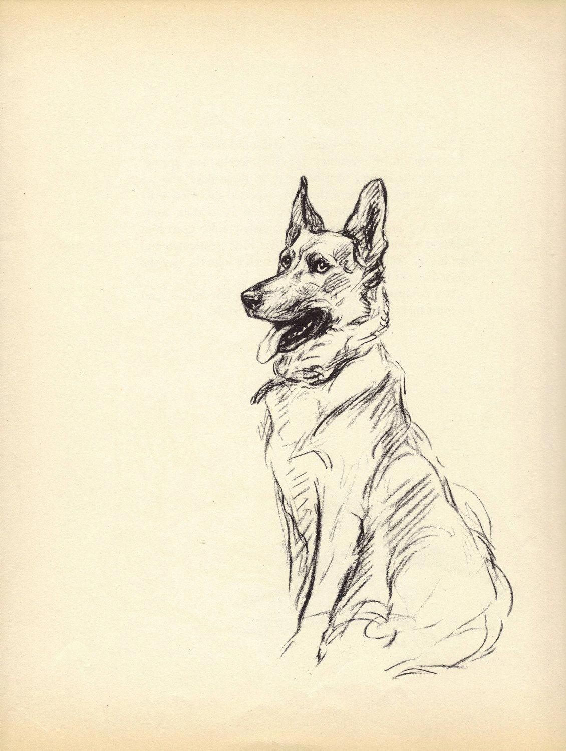 Everything We Adore About The Brave German Shepherd Puppy Germanshepherdpage Germanshepherdpuppyworld Germanshepherd German Shepherd Art Dog Art Dog Drawing