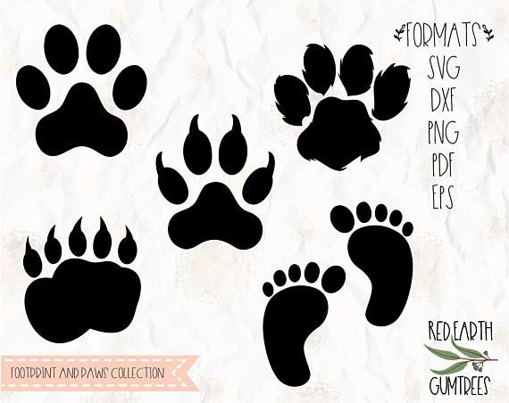 Paws Baby Footprint Bear Paws Dog Paw Svg Png Dxf Eps Etsy Bear Footprint Bear Paws Animal Footprints