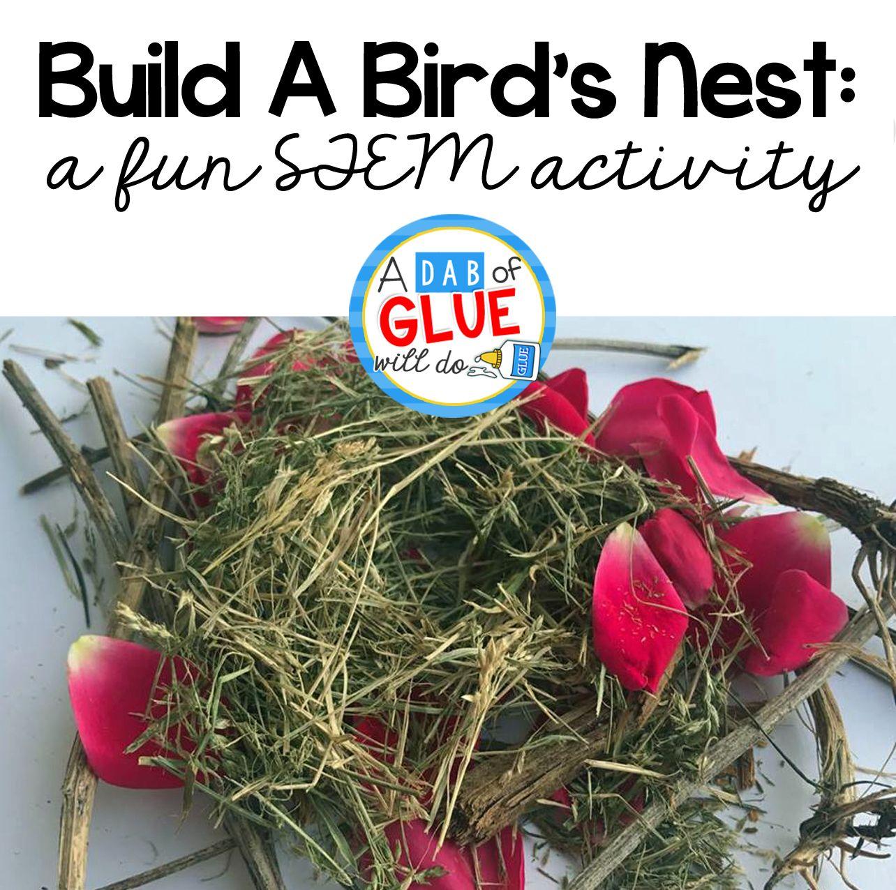 Build A Birds Nest