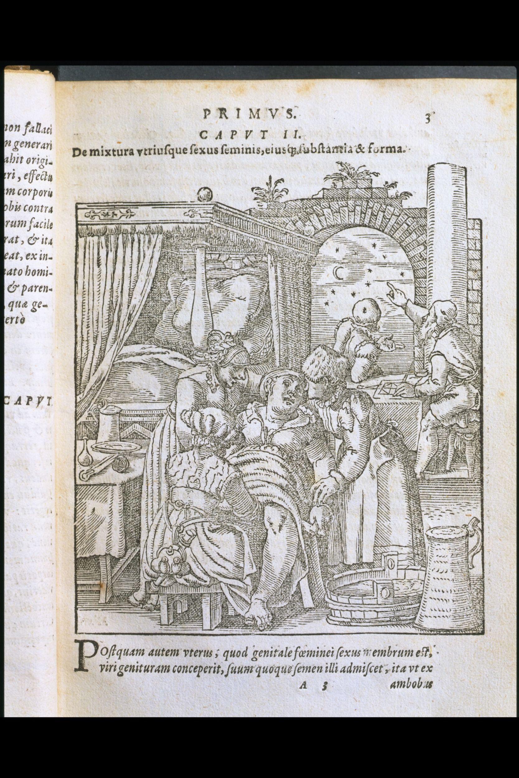 Did 16th Century German Women Wear Fur? 16th century