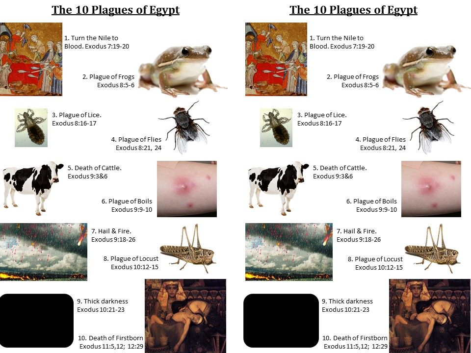 a history of the ten plagues of egypt According to the story, god sent the plagues to egypt, one at a time, in order to try and persuade ramses to let the jewish slaves go from egypt these plagues, increasing in severity, were to serve as a chastisement for the stubborn ramses, and as a proof of the power of the hebrew god.