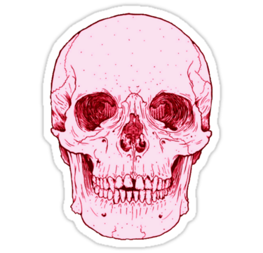 Tumblr stickers tumblr pink human skull stickers by sadeelishad redbubble