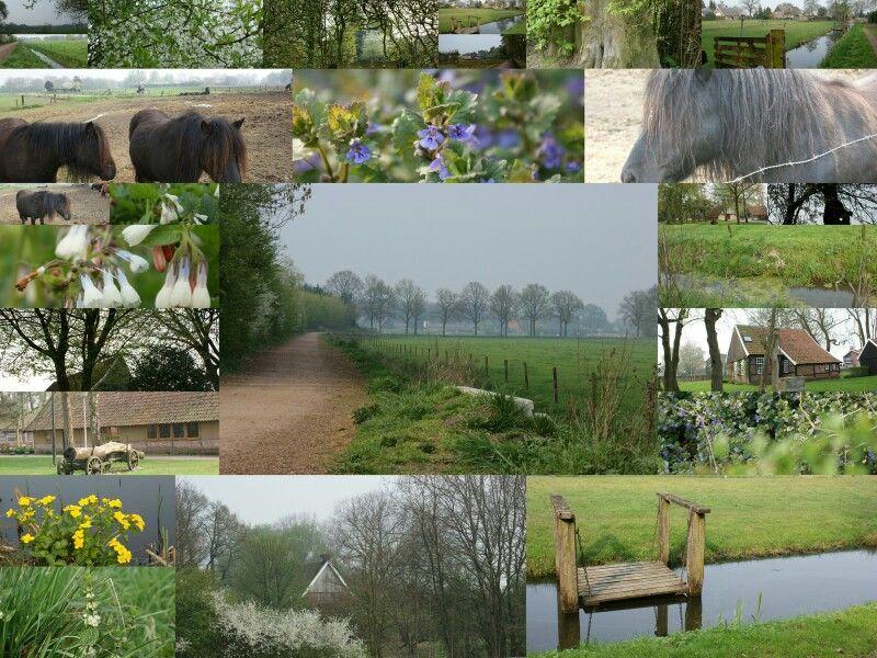 My own Village Losser the Netherlands
