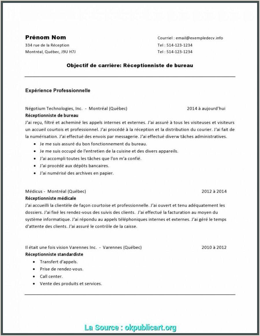 Exemple De Cv Receptionniste Hotel Resume Examples Resume Stock Analysis