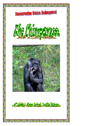 St Aidens ~Free African Animal Activity Books. the chimpanzee