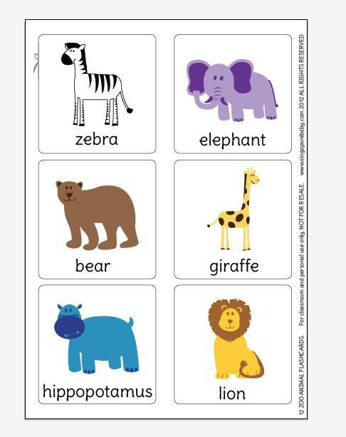 graphic about Printable Animal Flash Cards named Free of charge Printable Zoo Animal Flash Playing cards flashcards prendas