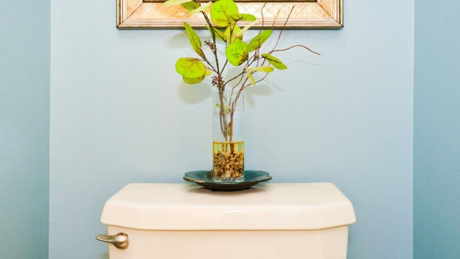 Can baking soda and vinegar unclog a toilet clogged