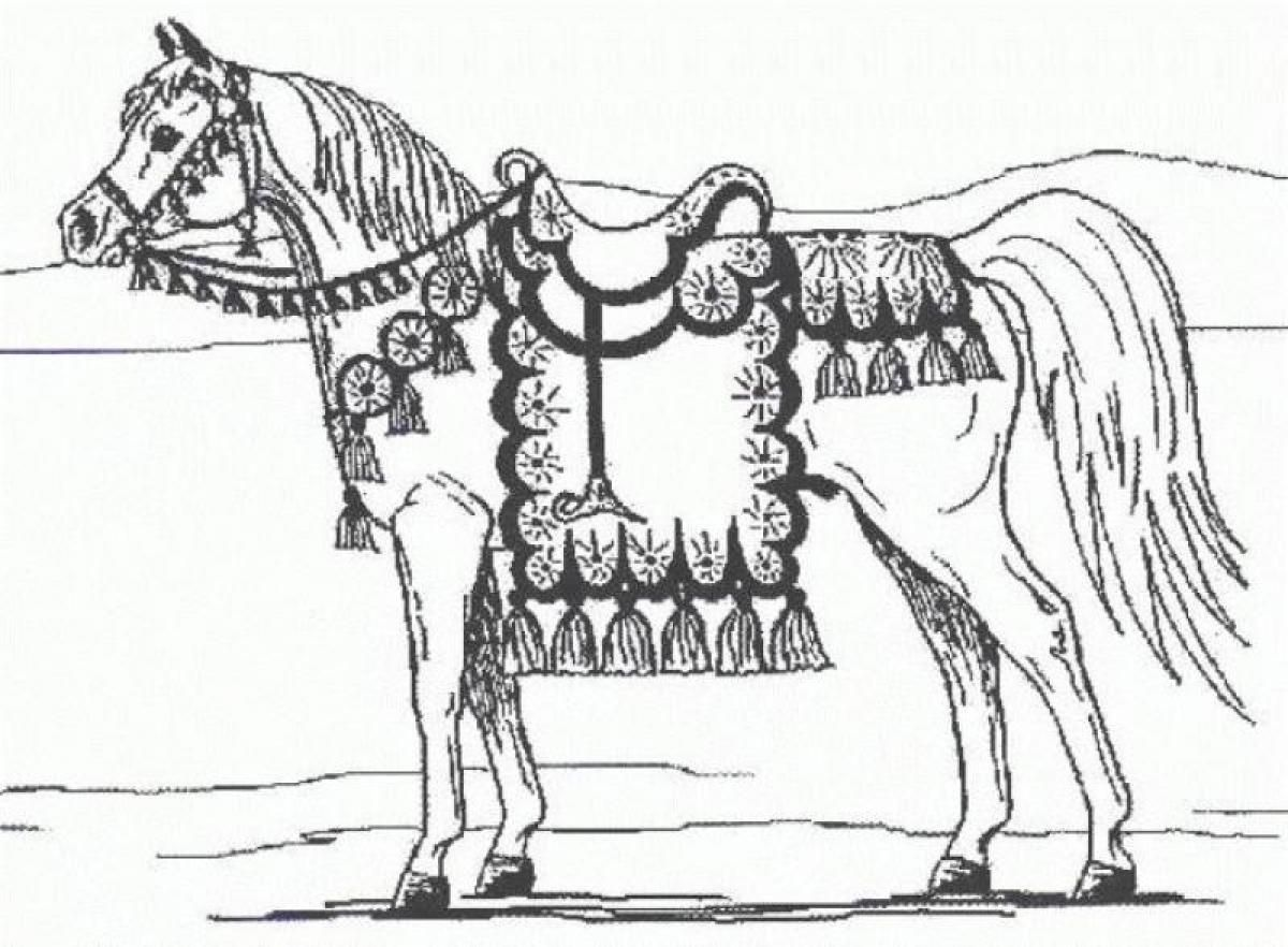 Dressage Horse Animal Coloring Pages