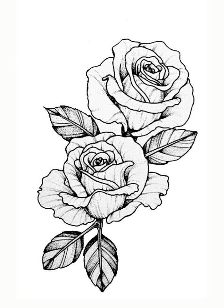 pin by miguelita moore on rose drawings tatouage dessin. Black Bedroom Furniture Sets. Home Design Ideas