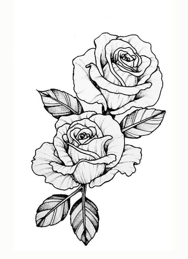 Pin af in s chabaury p tatouage tatouage dessins de fleurs pour tatouage og dessin rose - Dessin de rosier ...