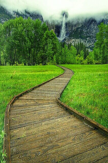 This is a photo of the Yosemite National Park in California, but we're focusing on the pathway here...  Would it make a great pathway design for your yard?