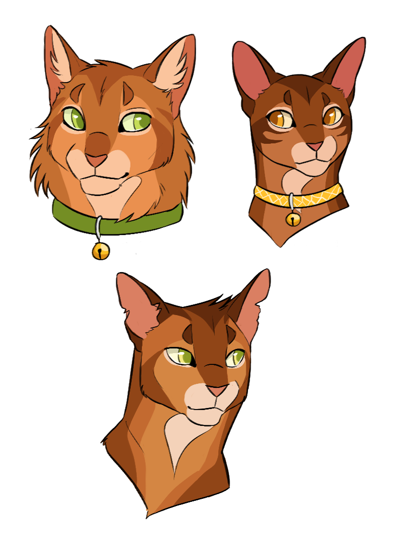 From kittypet to warrior, Firestar, his mother and his