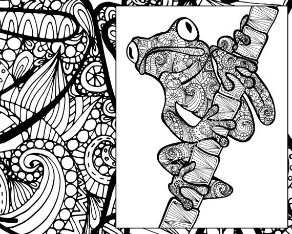 Frog Coloring Sheet Animal Pdf Zentangle Adult Colouring Page Sketch Grown Up